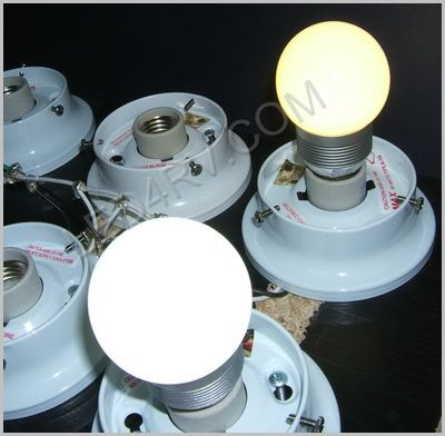 12 Volt Standard US 110 socket Bright White bulb SKU175